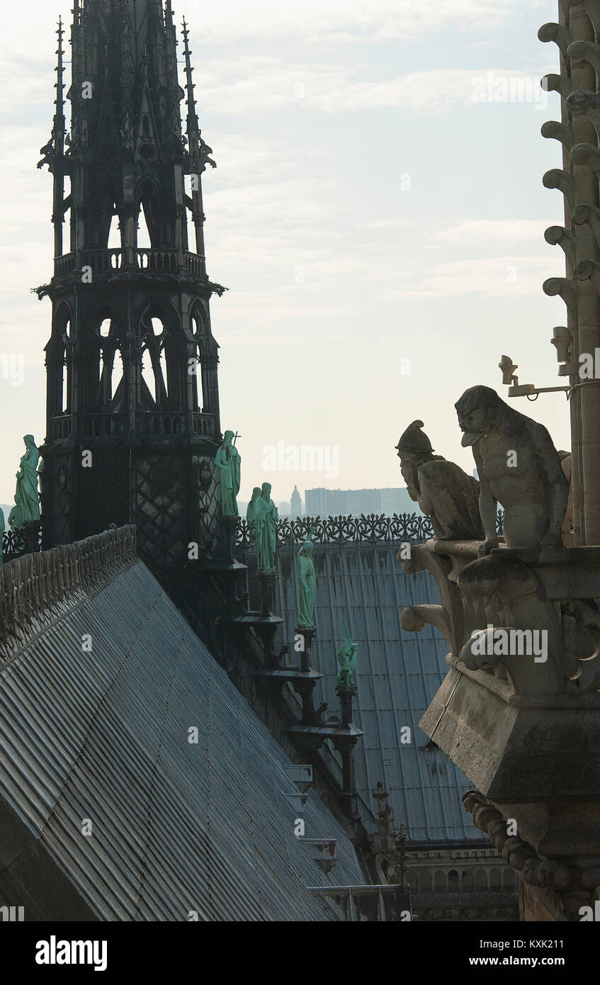 View from the top of Notre Dame in Paris, France. - Stock Image