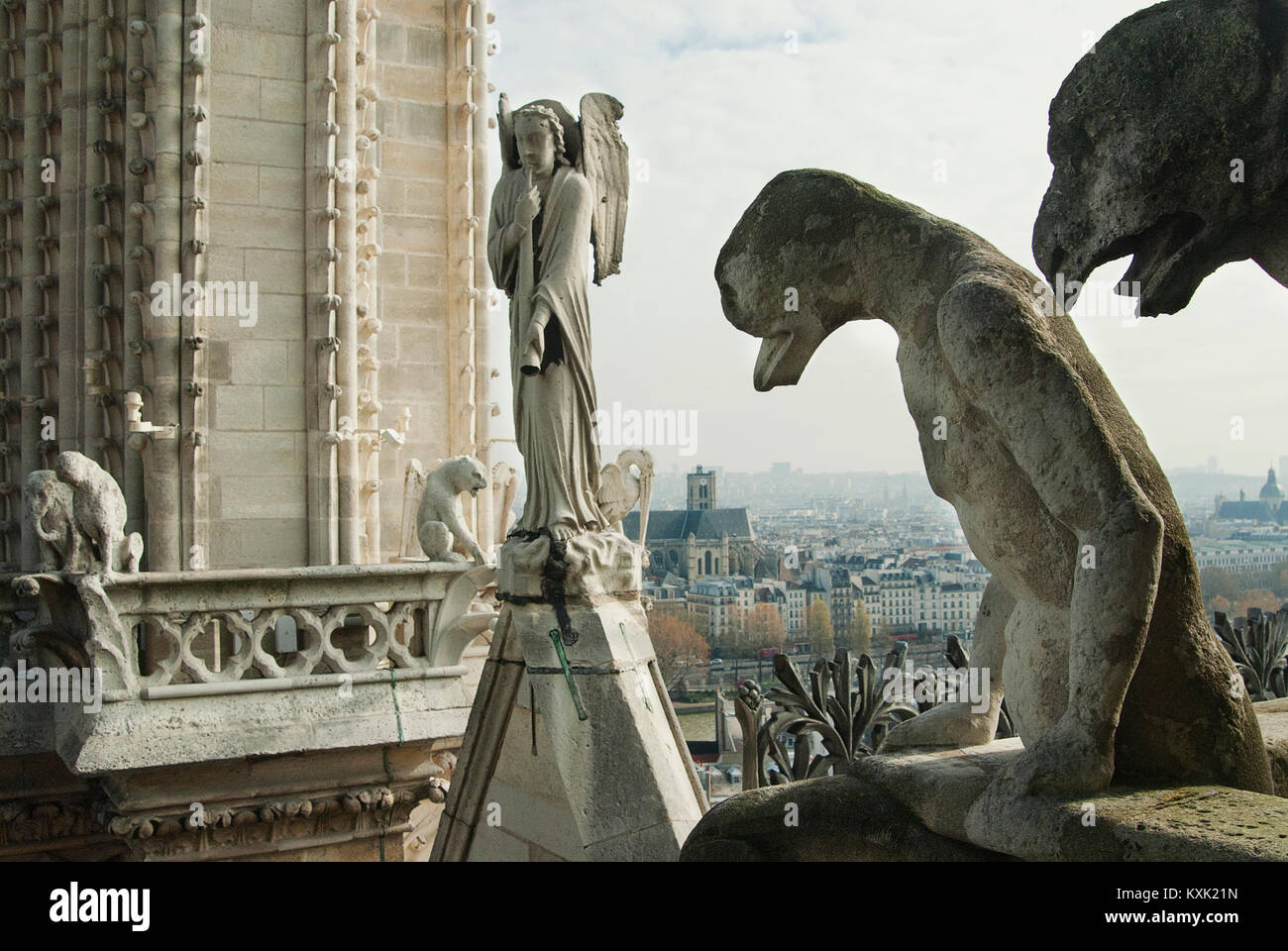 The top of Notre Dame. Paris, France - Stock Image