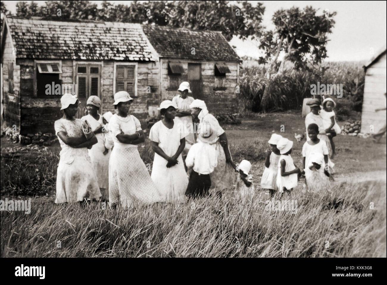 Plantation Workers - Stock Image