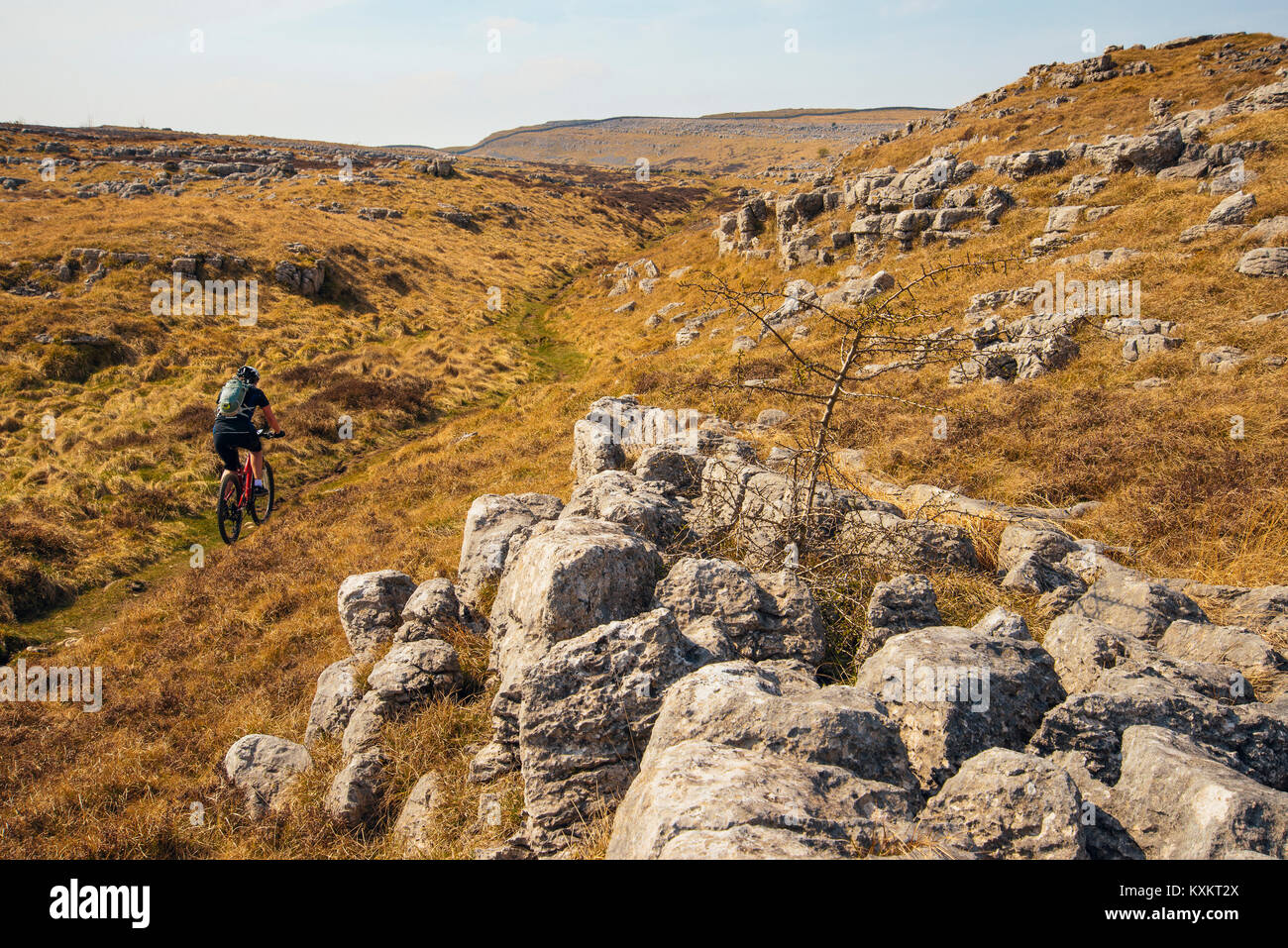 Female mountain biker on bridleway through Great Asby Scar National Nature Reserve in Cumbria - Stock Image