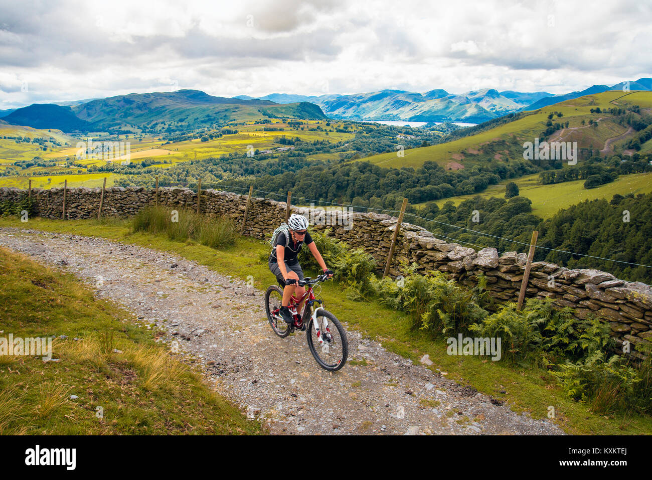 Female mountain biker on bridleway around Blease Fell in the English Lake District - Stock Image