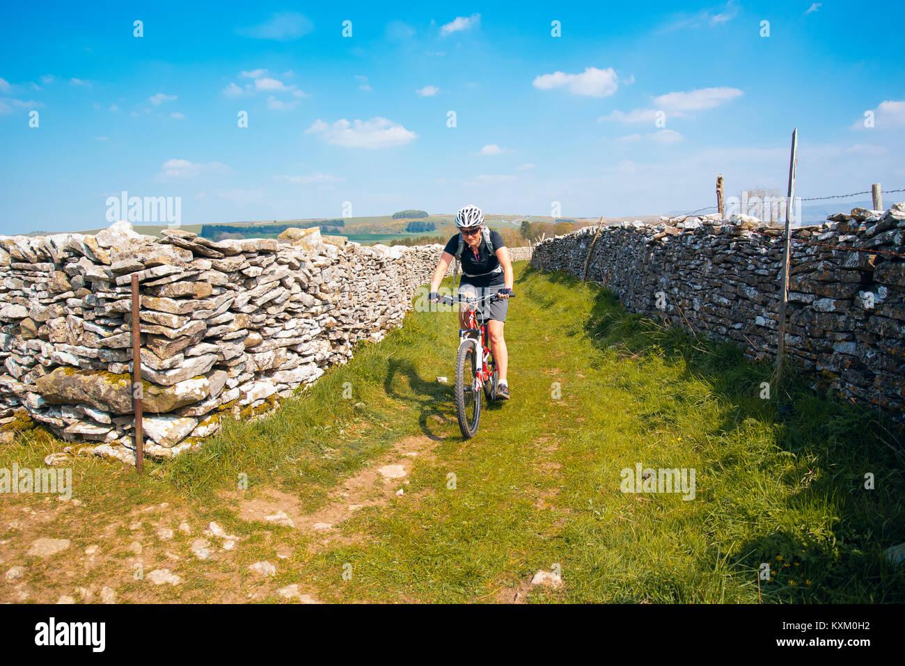 Female mountain biker on easy trail near Newbiggin-on-Lune, Cumbria - Stock Image