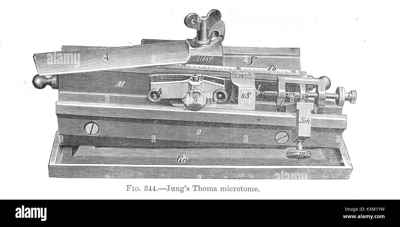 Jung's Thoma microtome - Stock Image