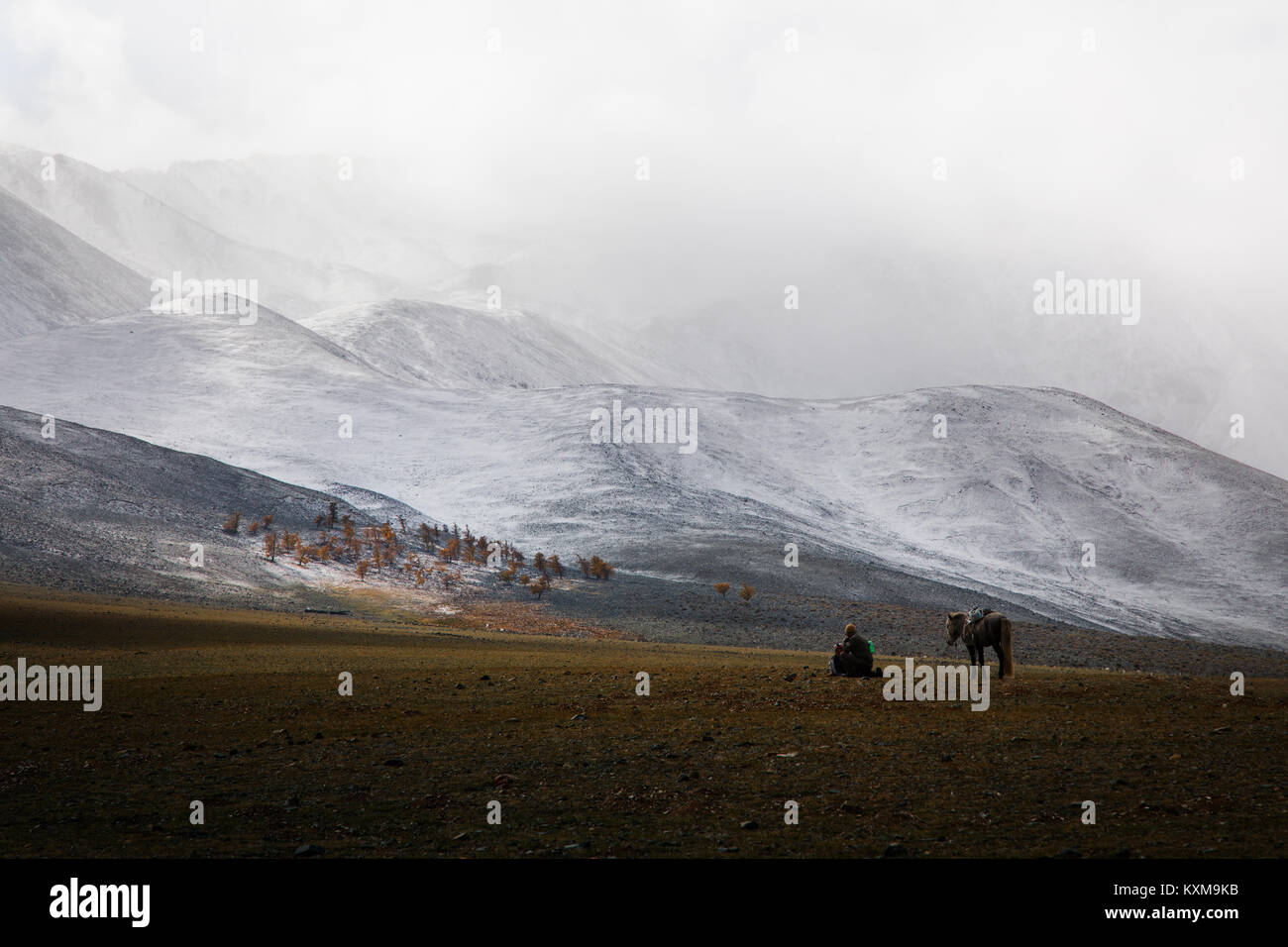 Goat keeper shepherd horse rider resting Mongolian winter snowy mountains - Stock Image