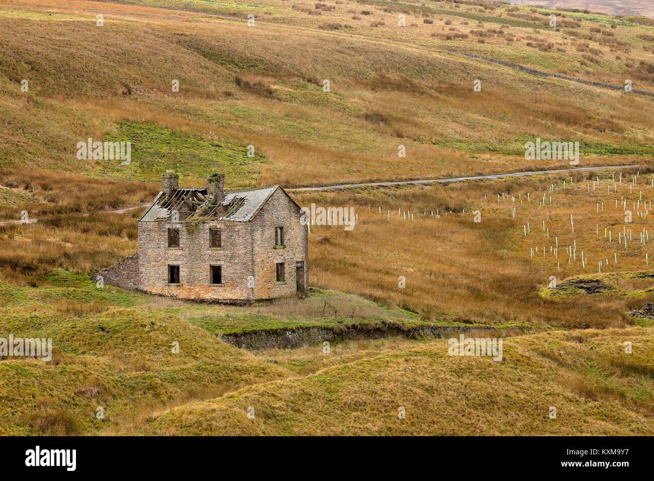 Derelict building near Grove Rake Mine buildings, Rookhope District, Weardale, North Pennines, County Durham, England, - Stock Image
