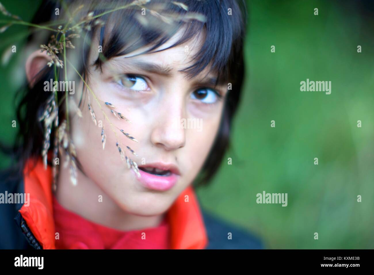 Kid in tall grass - Stock Image