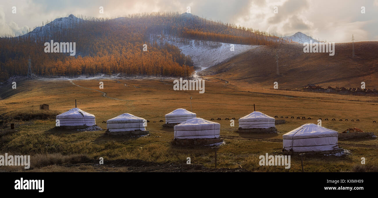 Mongolia Ulan Bator Ulaanbaatar ger camp sunset trees grasslands - Stock Image