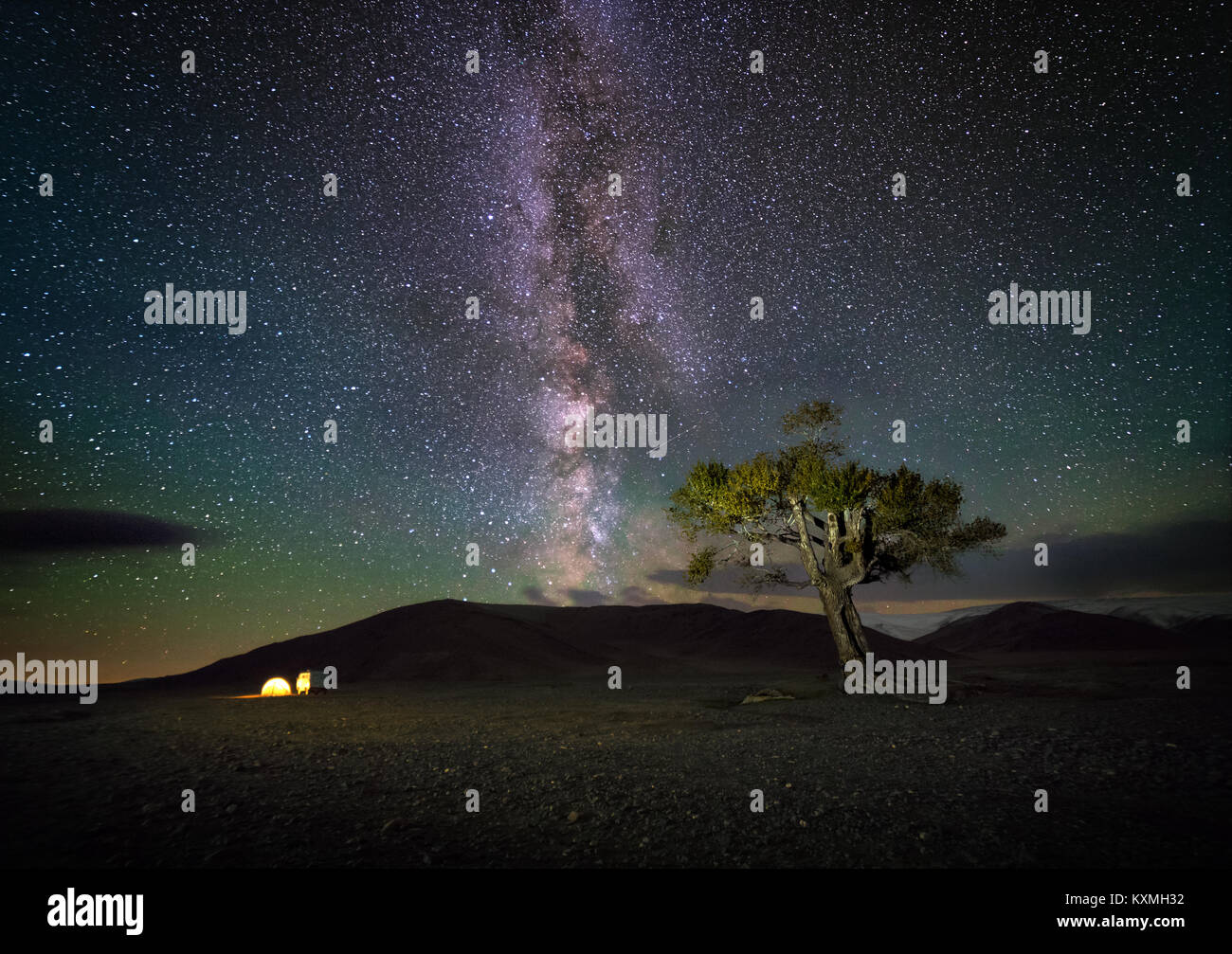 Mongolian milky way night sky astrophotography nightscape stars tree camping tent camper van Russian UAZ 452 Mongolia - Stock Image
