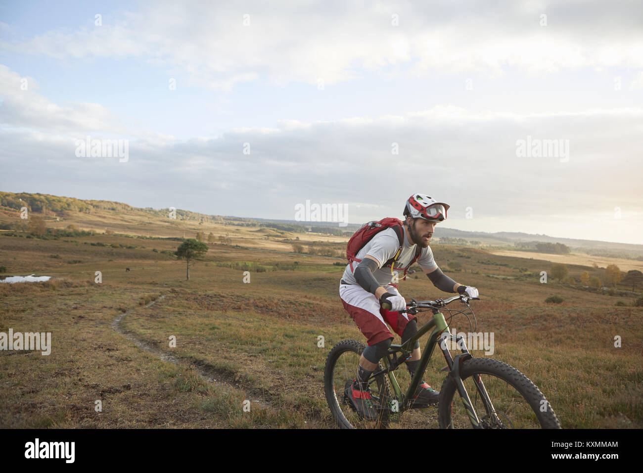 Male mountain biker biking up moorland track Stock Photo