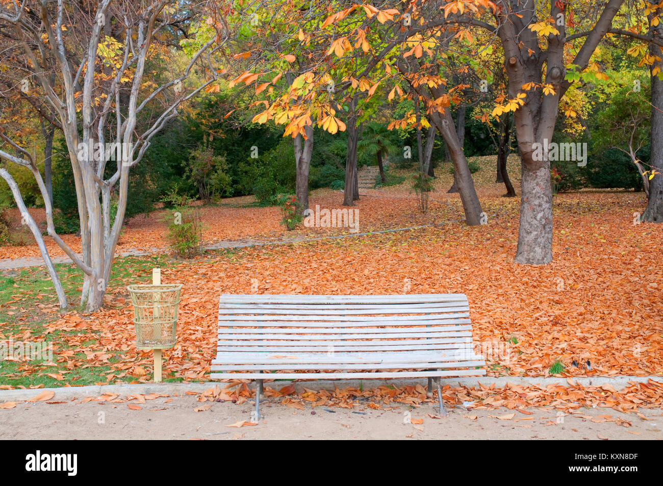 Bench and wastepaper basket. Campo del Moro gardens, Madrid, Spain. - Stock Image
