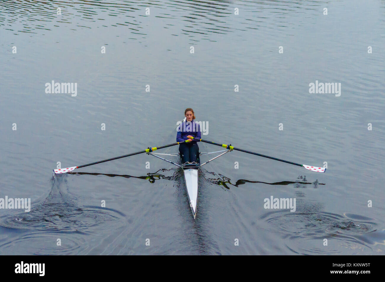 Single Scull Rowing Boat Stock Photos & Single Scull Rowing