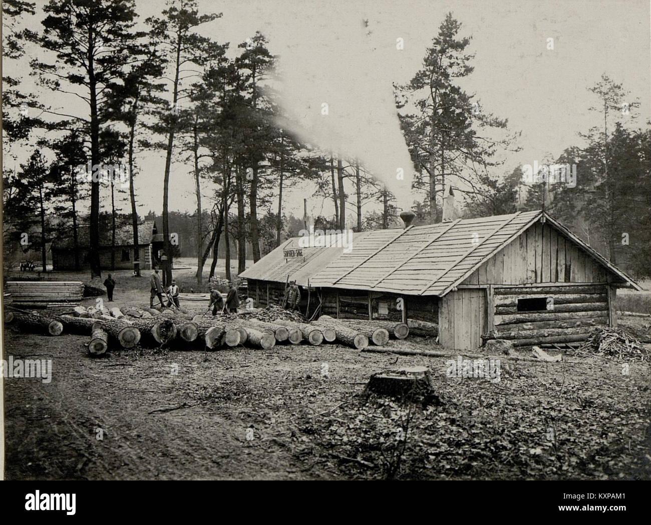 Eine vom 9. Korpskommando errichtete Gattersäge in Worotniewo Stock ...