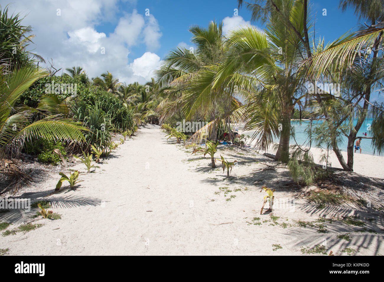 MYSTERY ISLAND, VANUATU, PACIFIC ISLANDS-DECEMBER 2,2017: Sandy path through palm trees and tourists on beach at - Stock Image