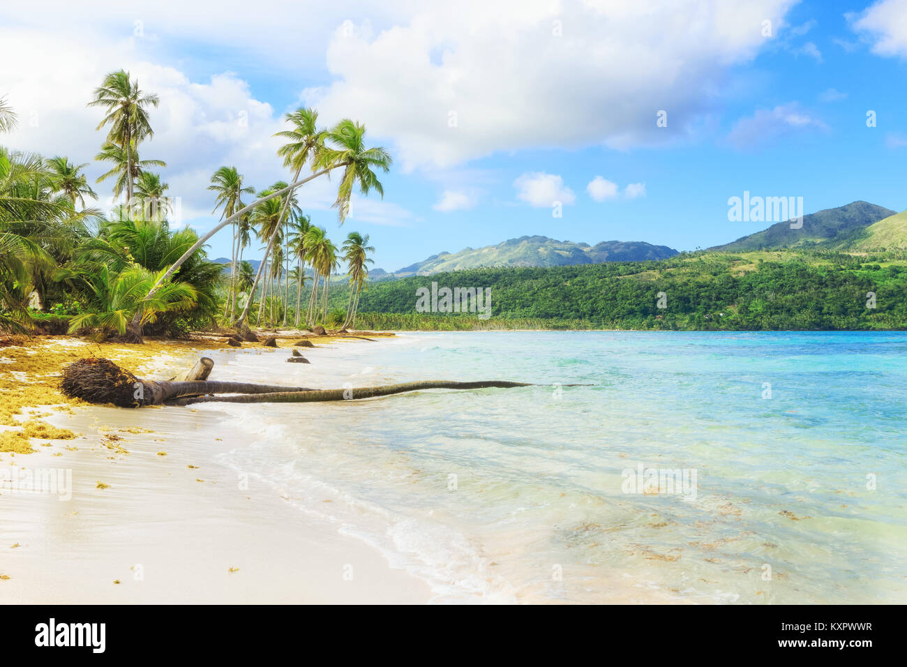 Panorama of famous secluded beach of Rincon, Las Galeras, Dominican Republic - Stock Image