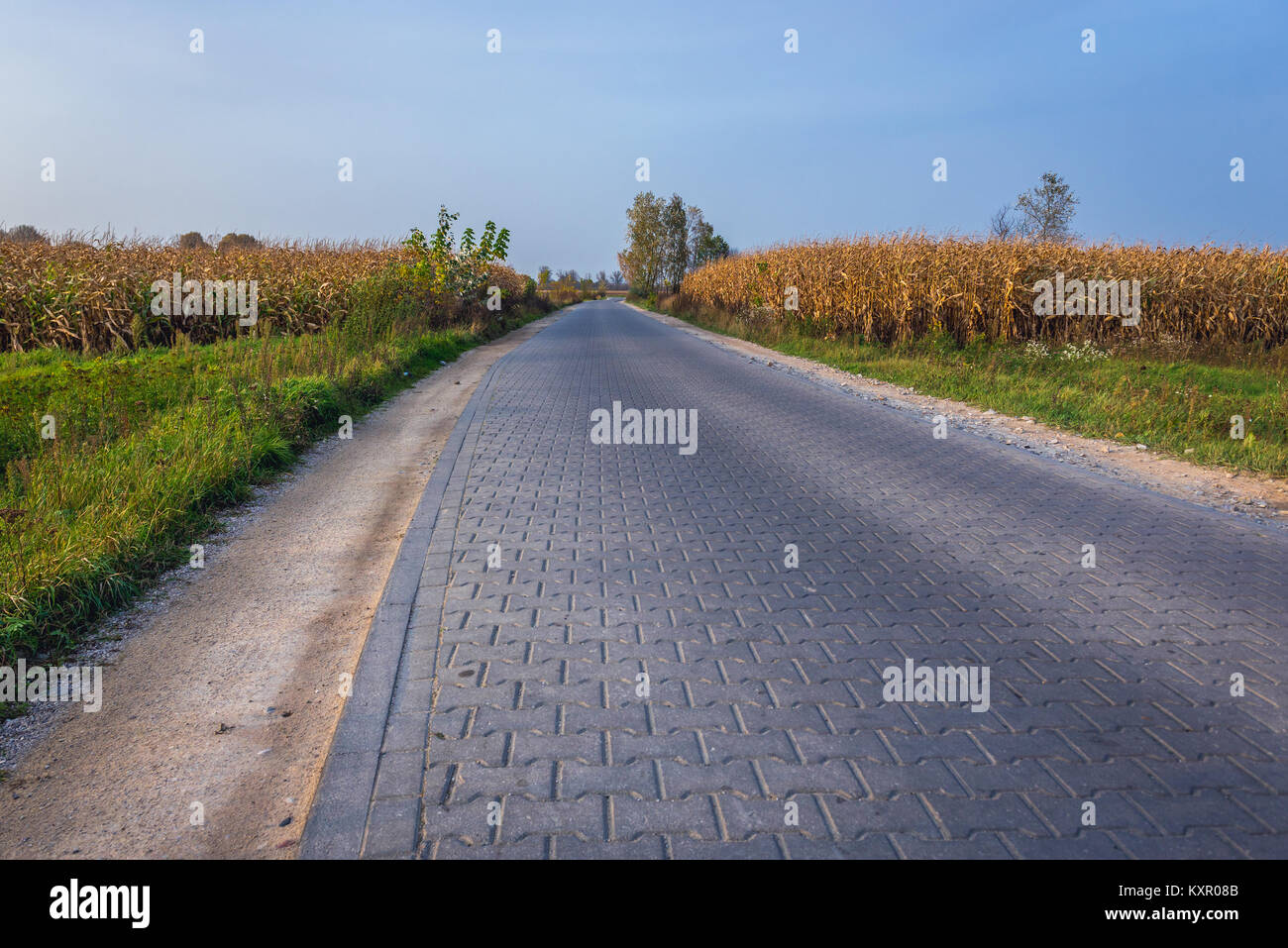 Modern paving stones road in Brochow village, Sochaczew County in Masovian Voivodeship of Poland - Stock Image