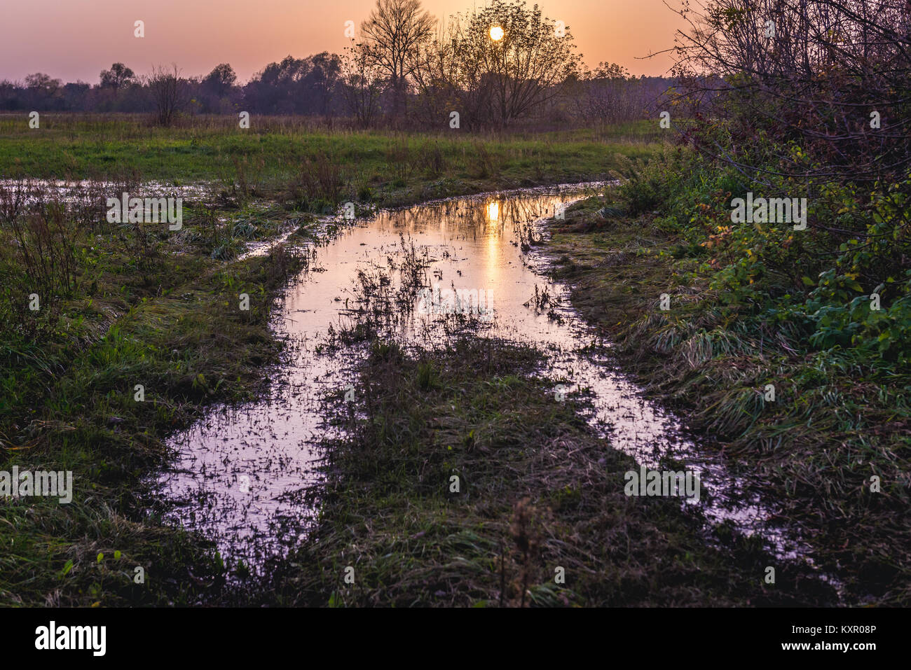 Sunset over flooded field road in Witkowice village, Sochaczew County in Masovian Voivodeship of Poland - Stock Image