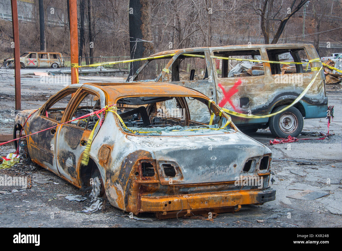 Fire damage, Gatlinburg, TN, fires November 2016, by Bill Lea/Dembinsky Photo Assoc - Stock Image
