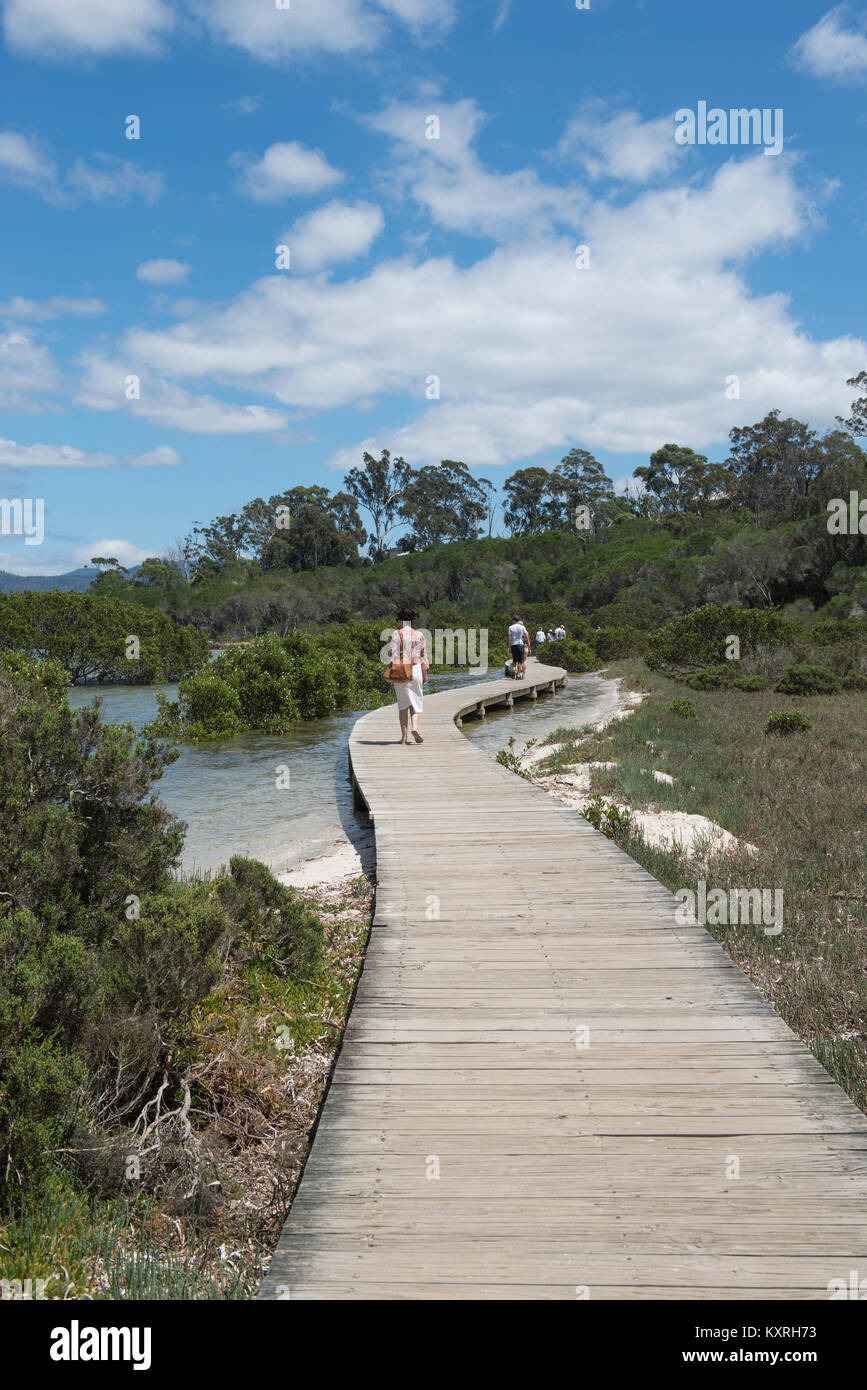 The Merimbula Boardwalk in New South Wales, Australia skirts the northern shores of the Top Lake section of Merimbula - Stock Image