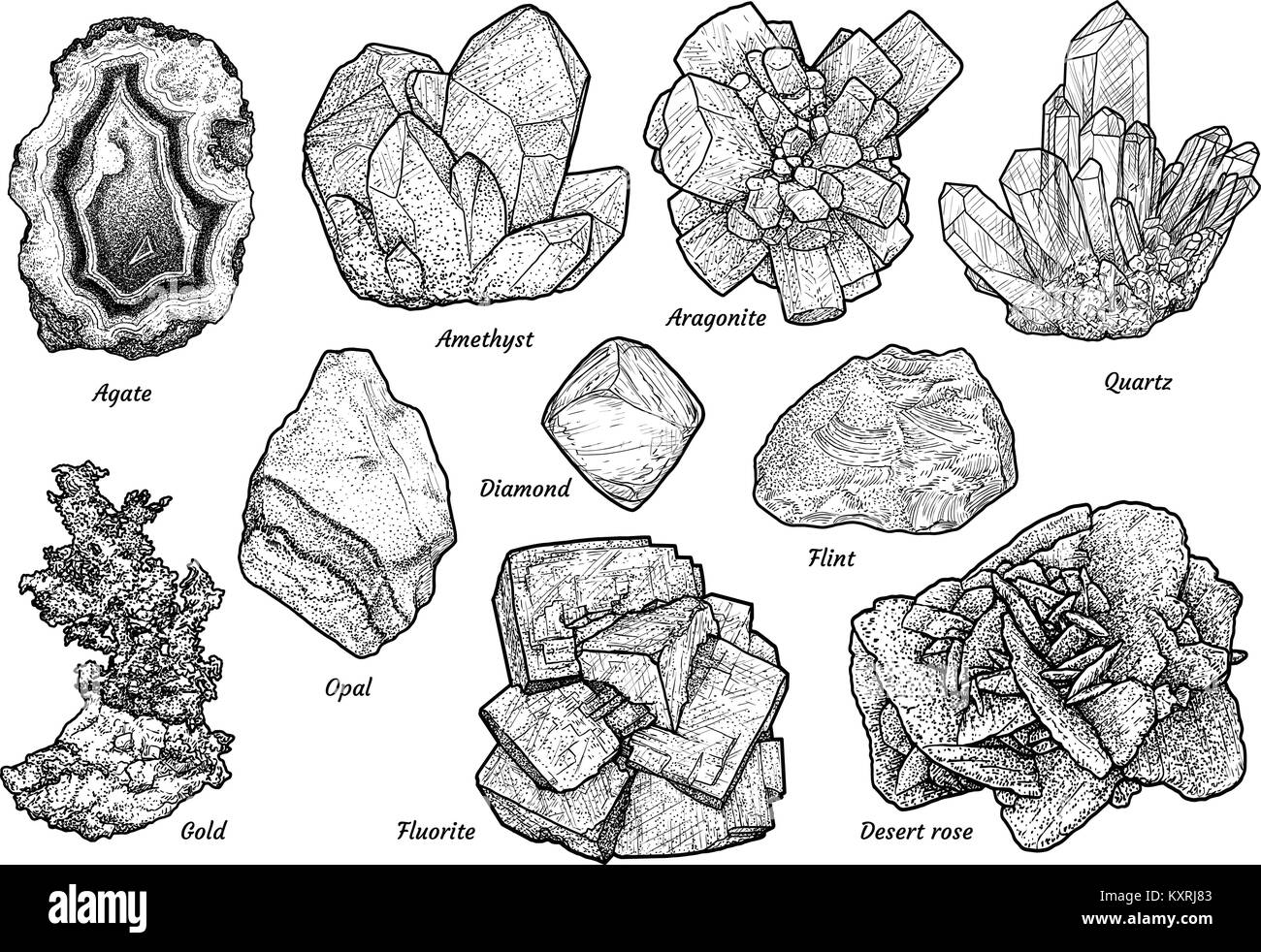 Mineral collection illustration, drawing, engraving, ink, line art,   vector - Stock Image