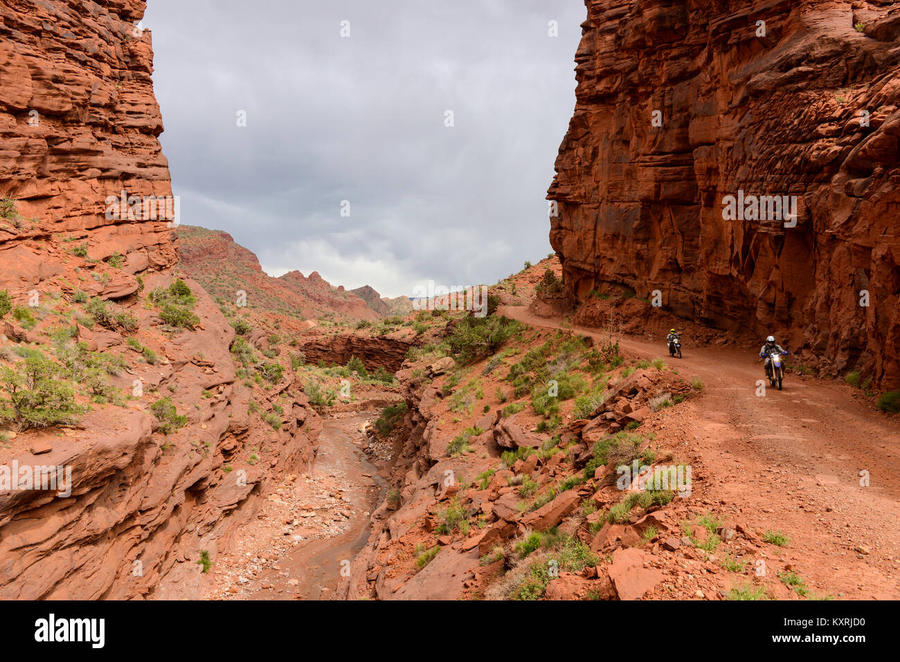 Dirt-bike Riding in Red Canyon - Bikers are enjoying their dirt-road ride in a steep canyon near Colorado River - Stock Image