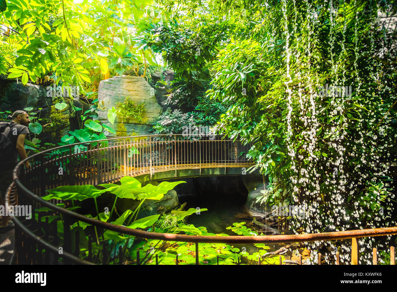 deep jungle walk waterfall adventurer man explorer artificial railing - Stock Image
