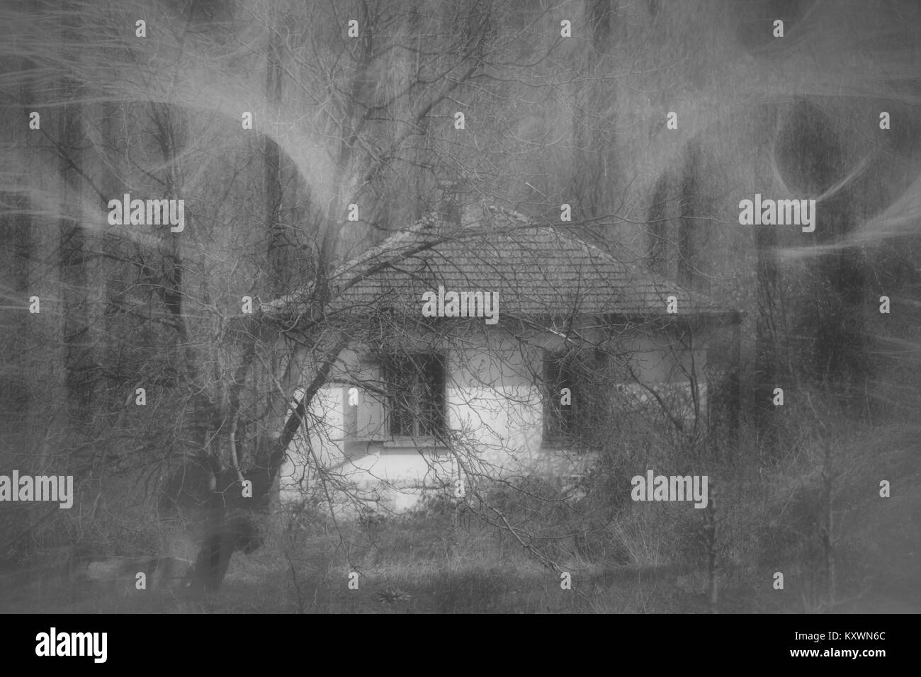 Ghostly demonic eyes above the abandoned house in the woods. Evil abstract background. - Stock Image