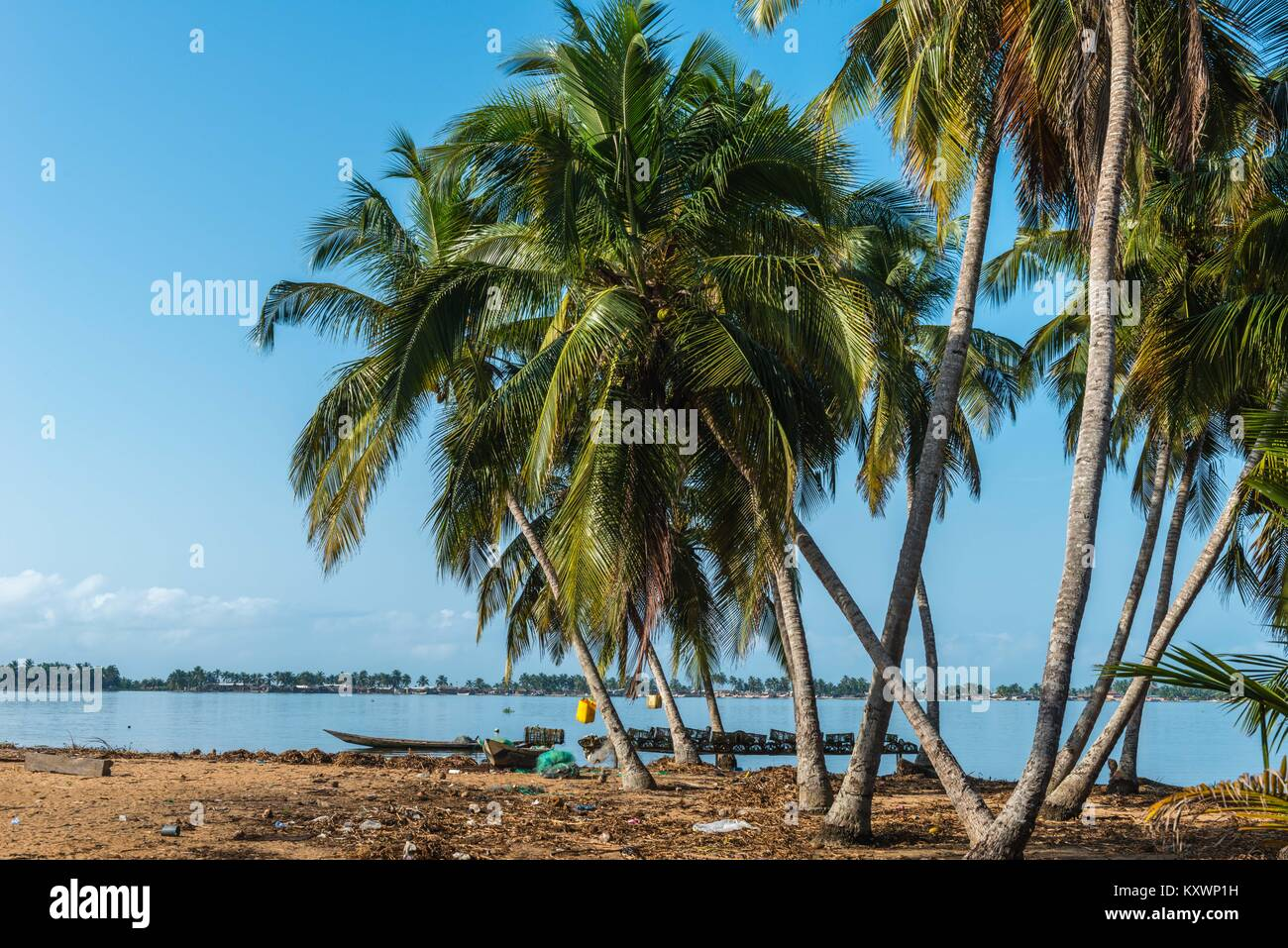 Aziza Island in the Volta River, Ada Foah, Greater Accra Region, Ghana, Africa - Stock Image