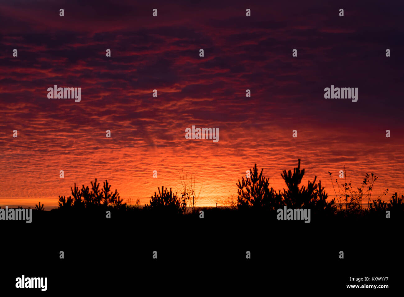sun set with funny clouds - Stock Image