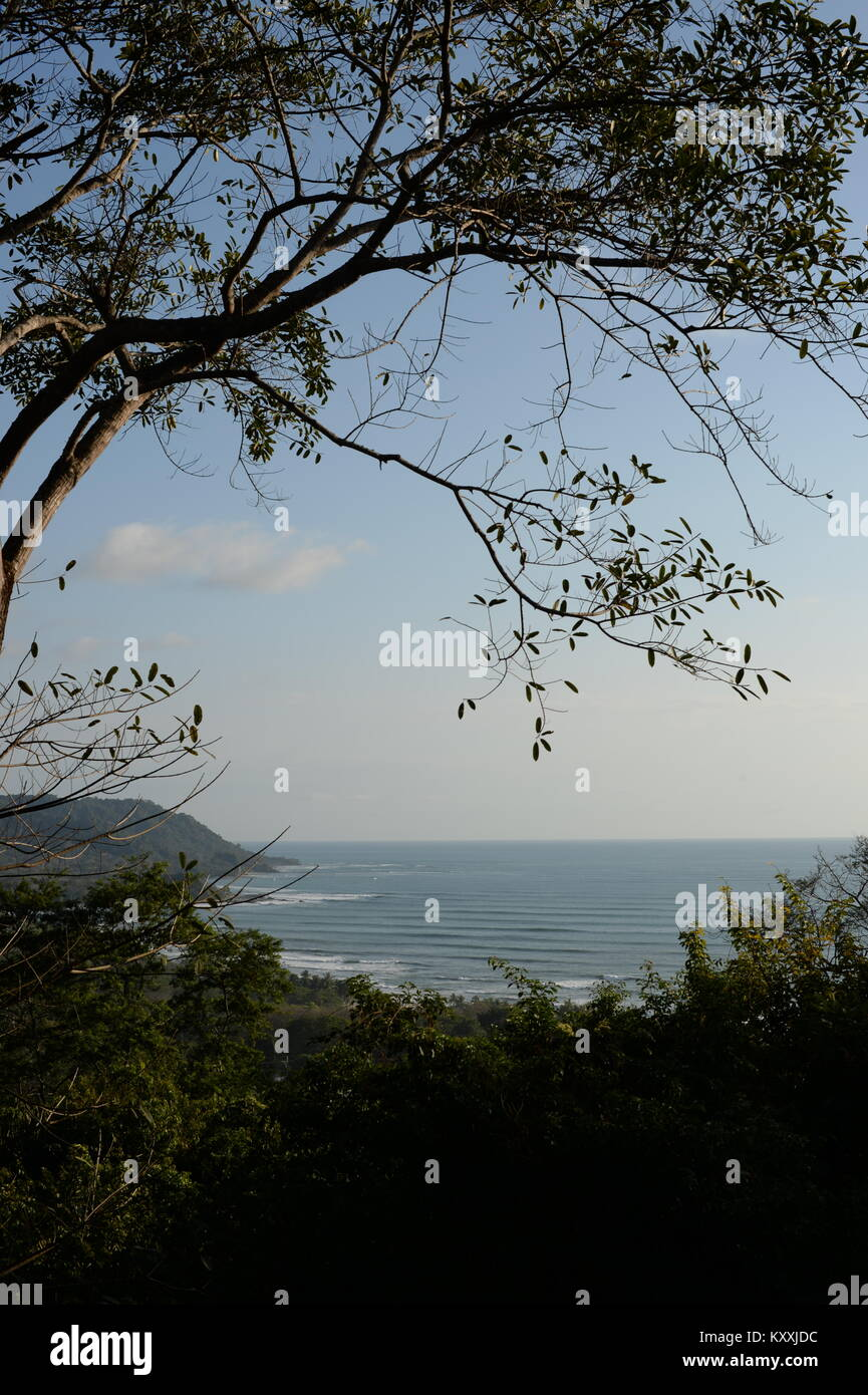 View of Malpais through the trees - a world class wave. The west coast of Costa Rica is a visual delight. - Stock Image