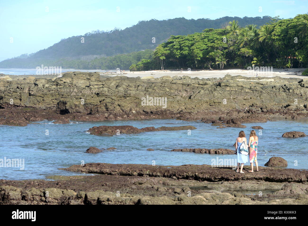 Two people - mother and daughter at waters edge watch a blue heron in tidal pool in Costa Rica - Stock Image
