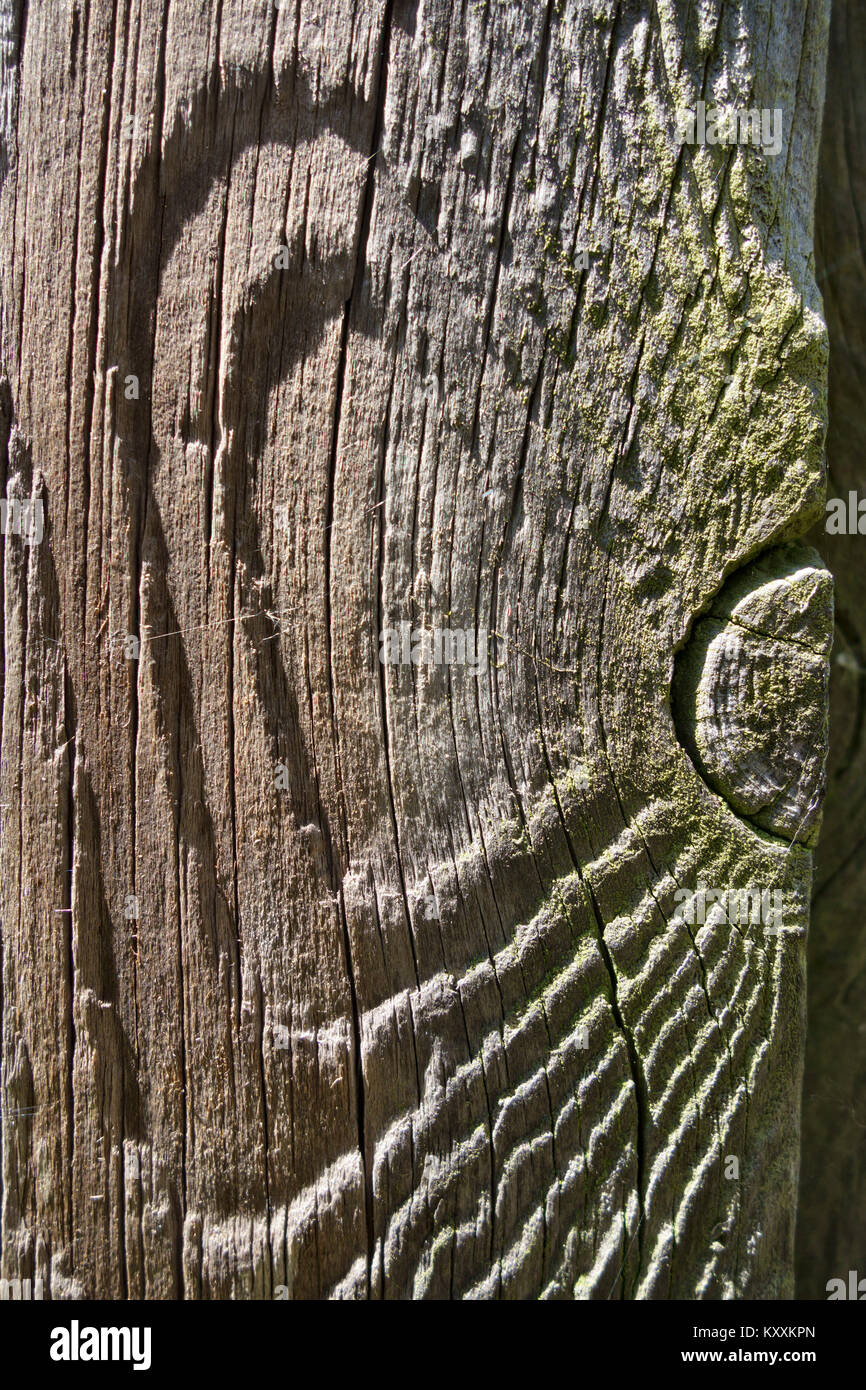 Detail of an old worn and weathered wooden fencepost - Stock Image