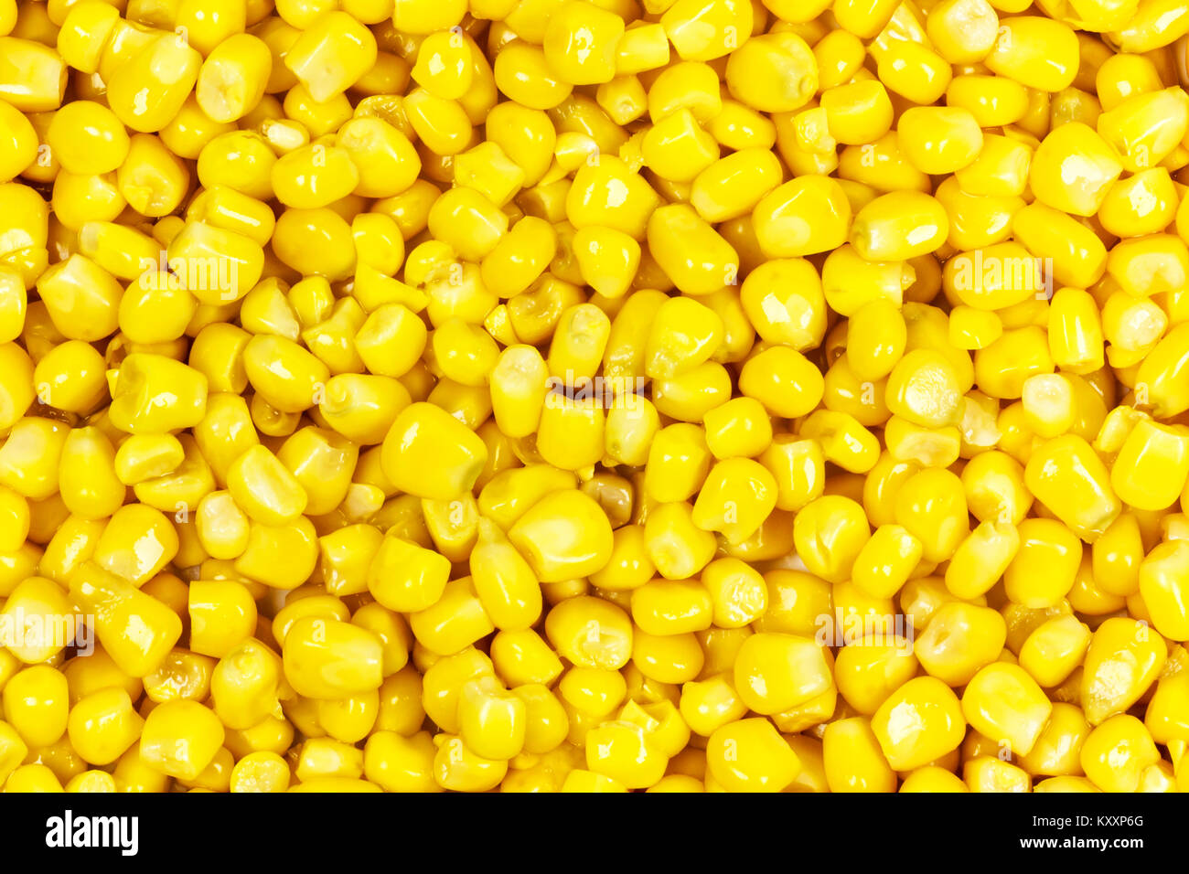 Close-up grains of corn over the entire surface of the image Stock Photo
