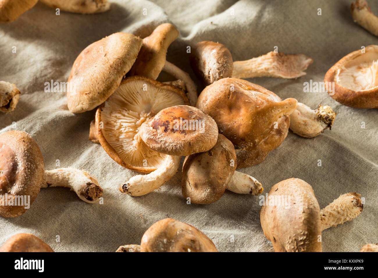 how to cook shiitake mushrooms in oven