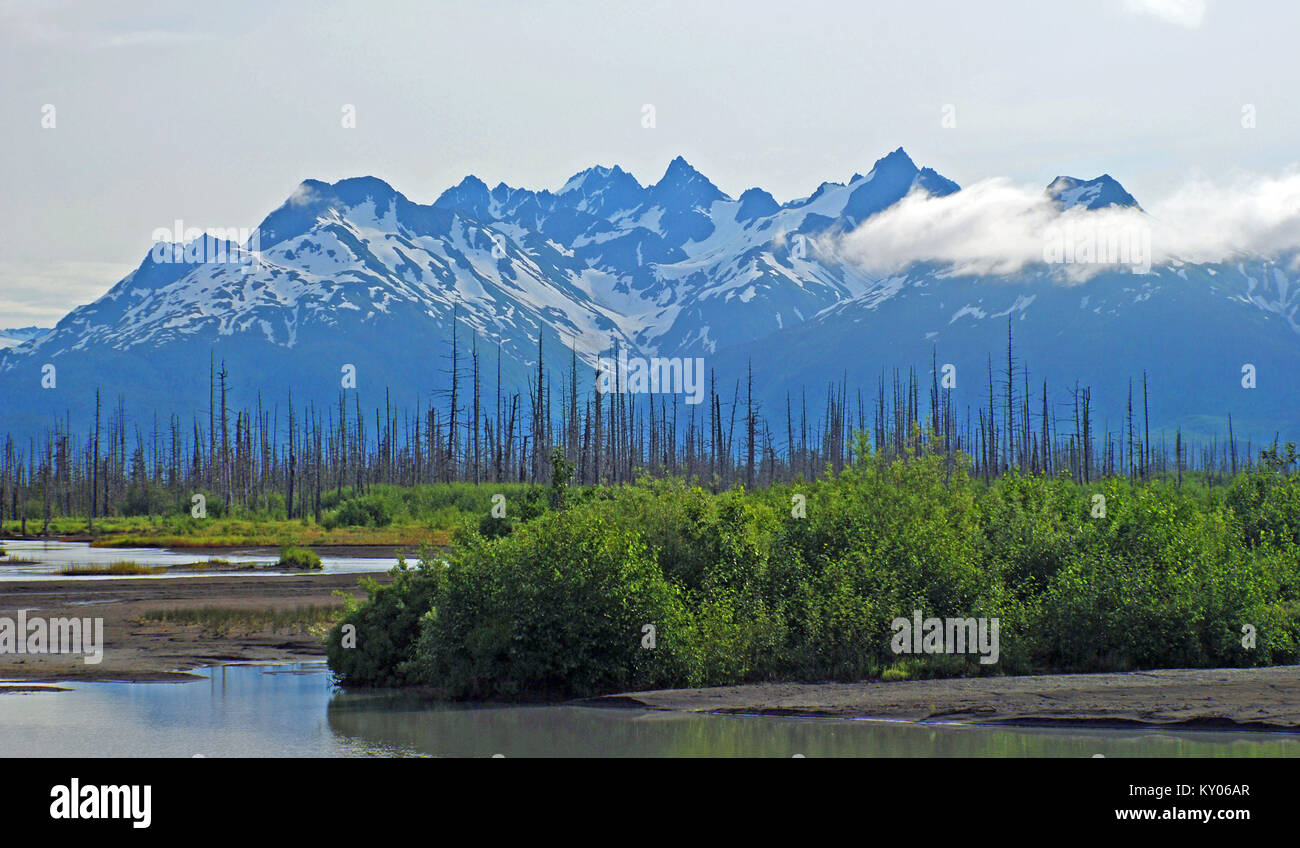 The wetlands of the Copper River with the Chugach mountains - Stock Image