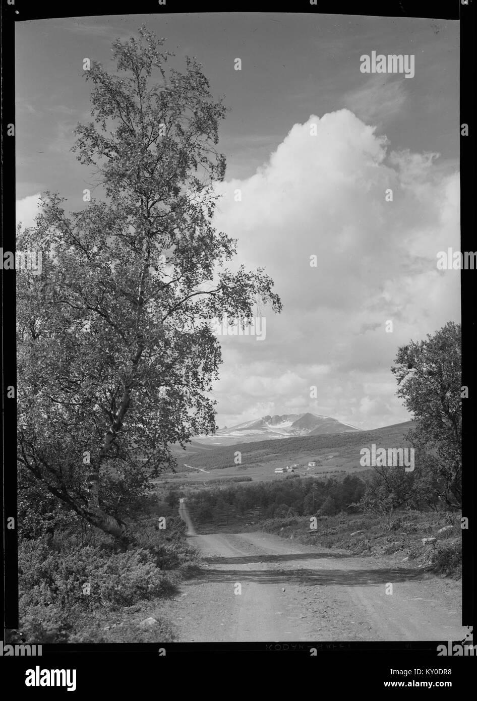 Hjerkinn mot Snøhetta - no-nb digifoto 20151105 00042 NB MIT FNR 06490 - Stock Image