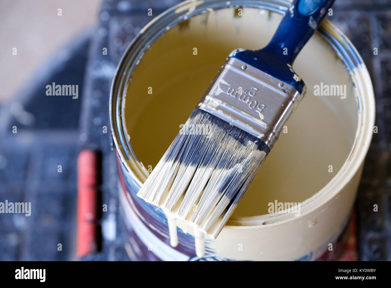 A half used tin of household interior wall paint with a used paint brush lying across the top of it. the brush is partially covered in wet paint Stock Photo