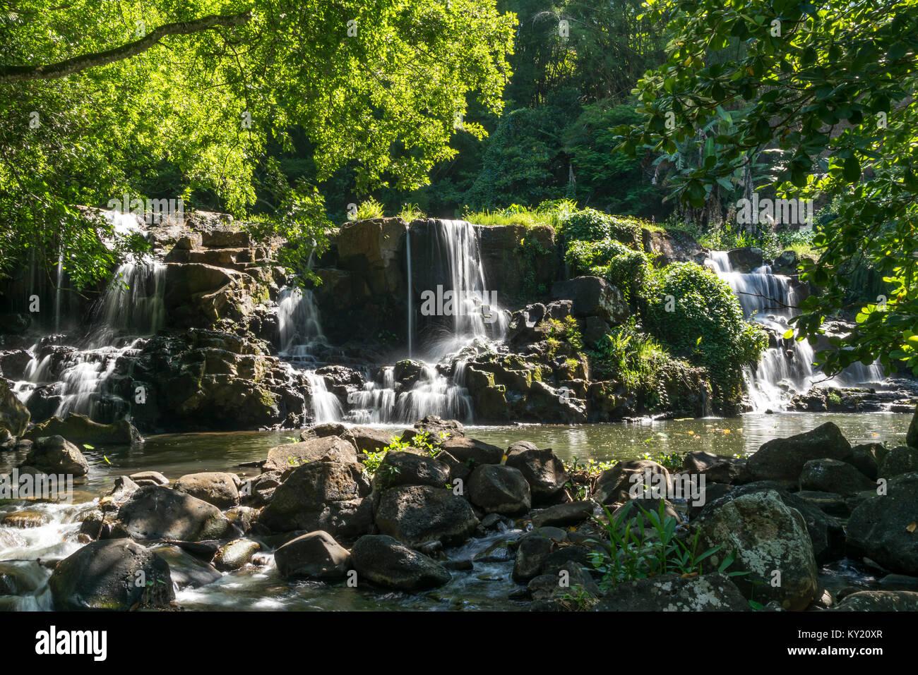 Wasserfall Im Park Des Eureka House / Maison Eureka In Moka, Mauritius,  Afrika |