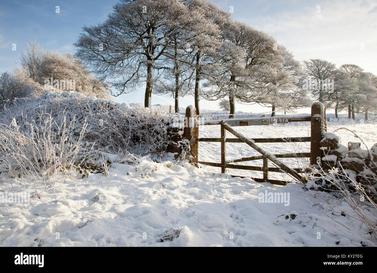 Winter sun with blue sky`s, snow and frost covered fields and trees wooden gate near Brassington High Peak Trail - Stock Image