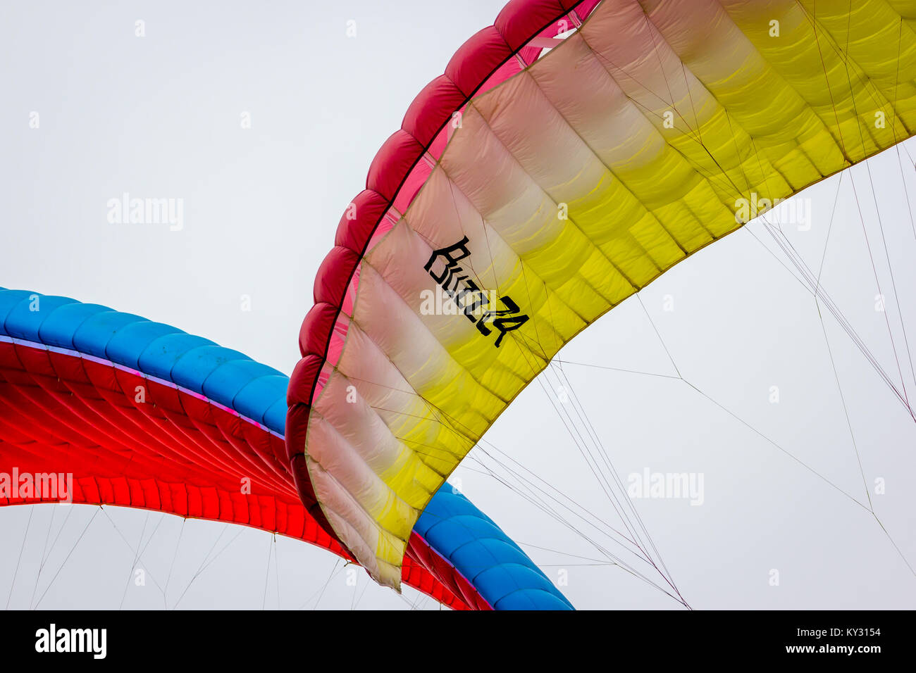 Hang gliders over Sussex - Stock Image