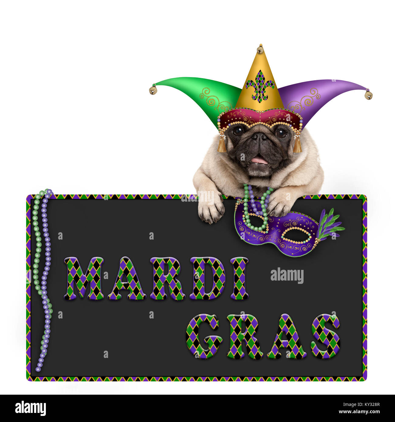 Mardi gras pug dog with carnival hat, beads and venetian mask hanging on blackboard sign with text, isolated on - Stock Image