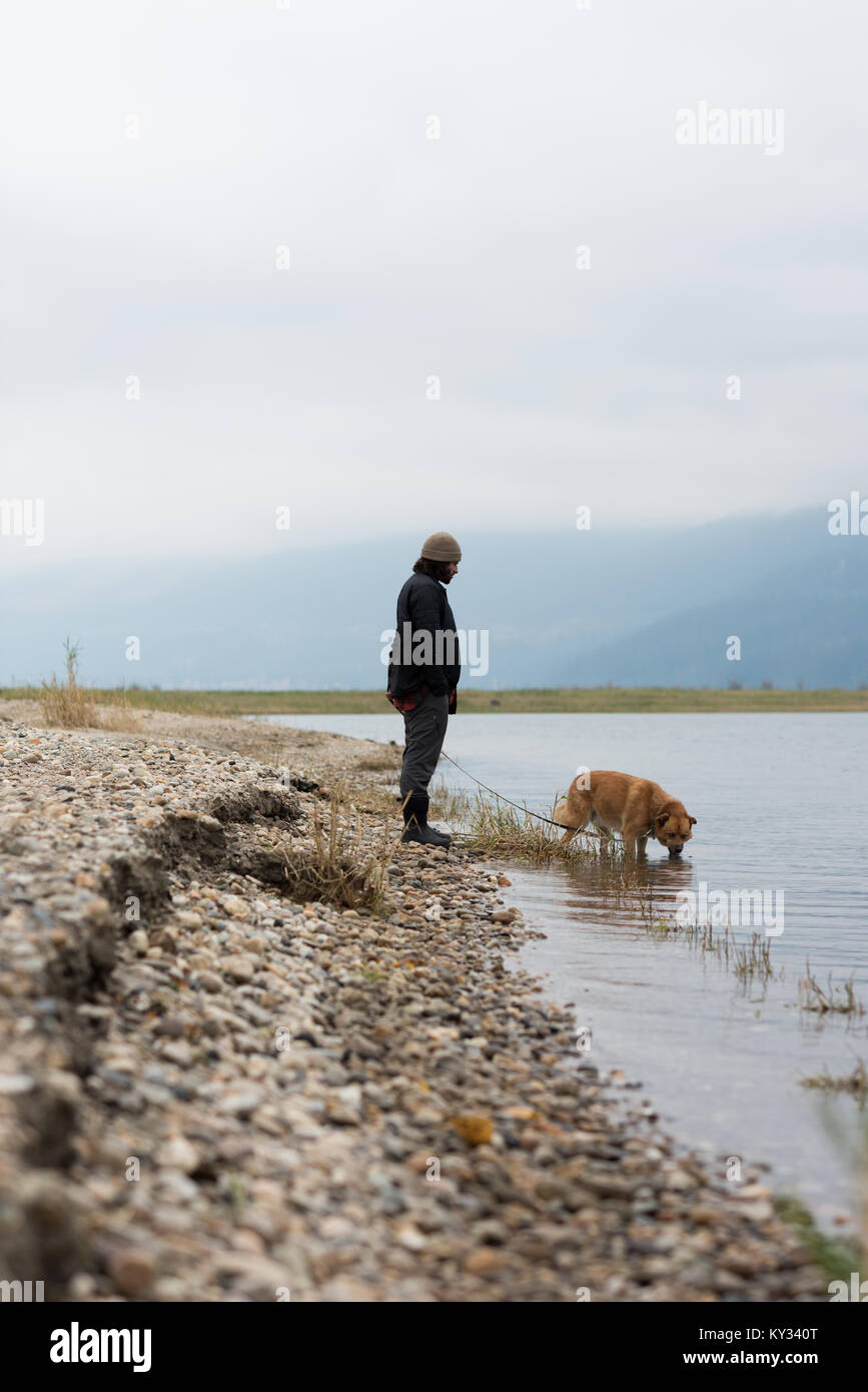 Man letting his pet dog drink water from river - Stock Image