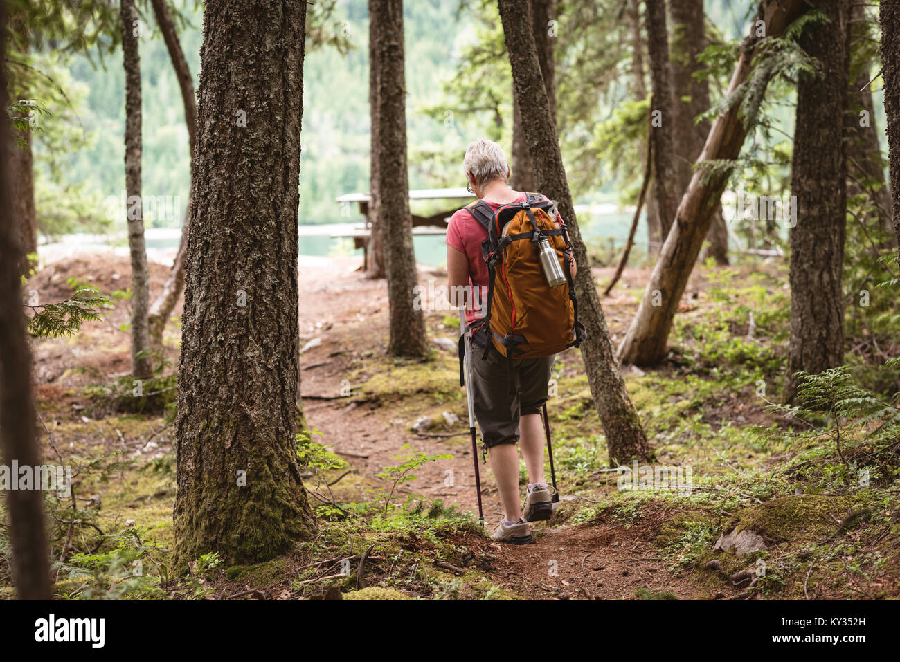 Mature woman hiking in forest - Stock Image