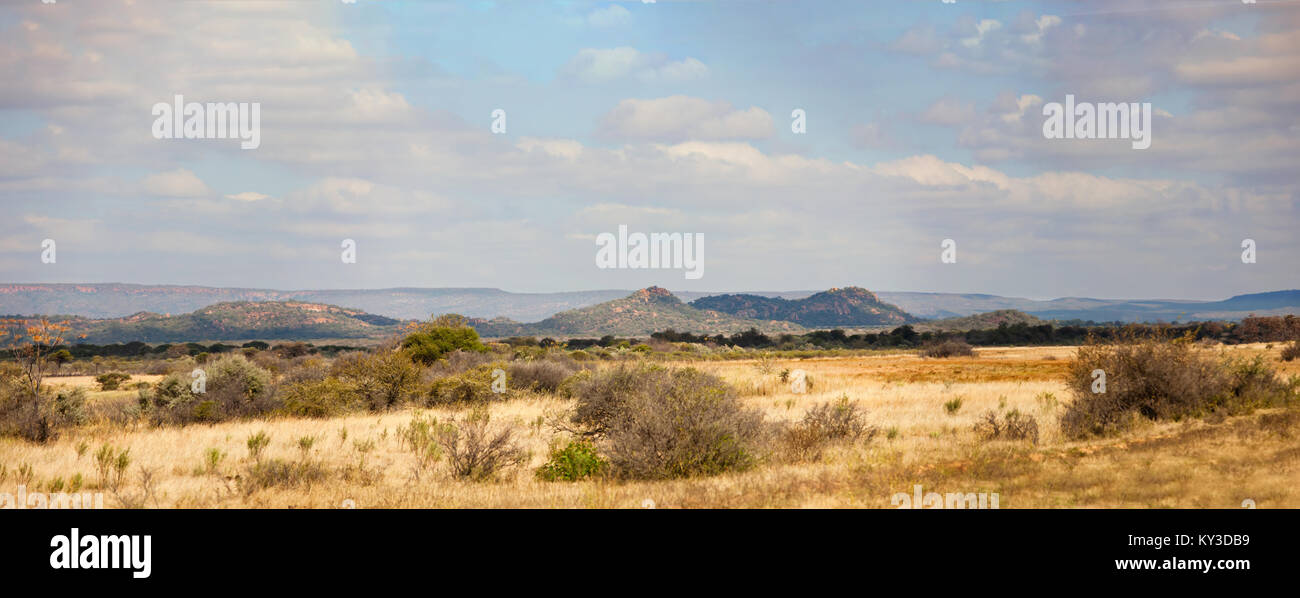 The Bushveld is a sub-tropical woodland ecoregion of Southern Africa, Botswana - Stock Image