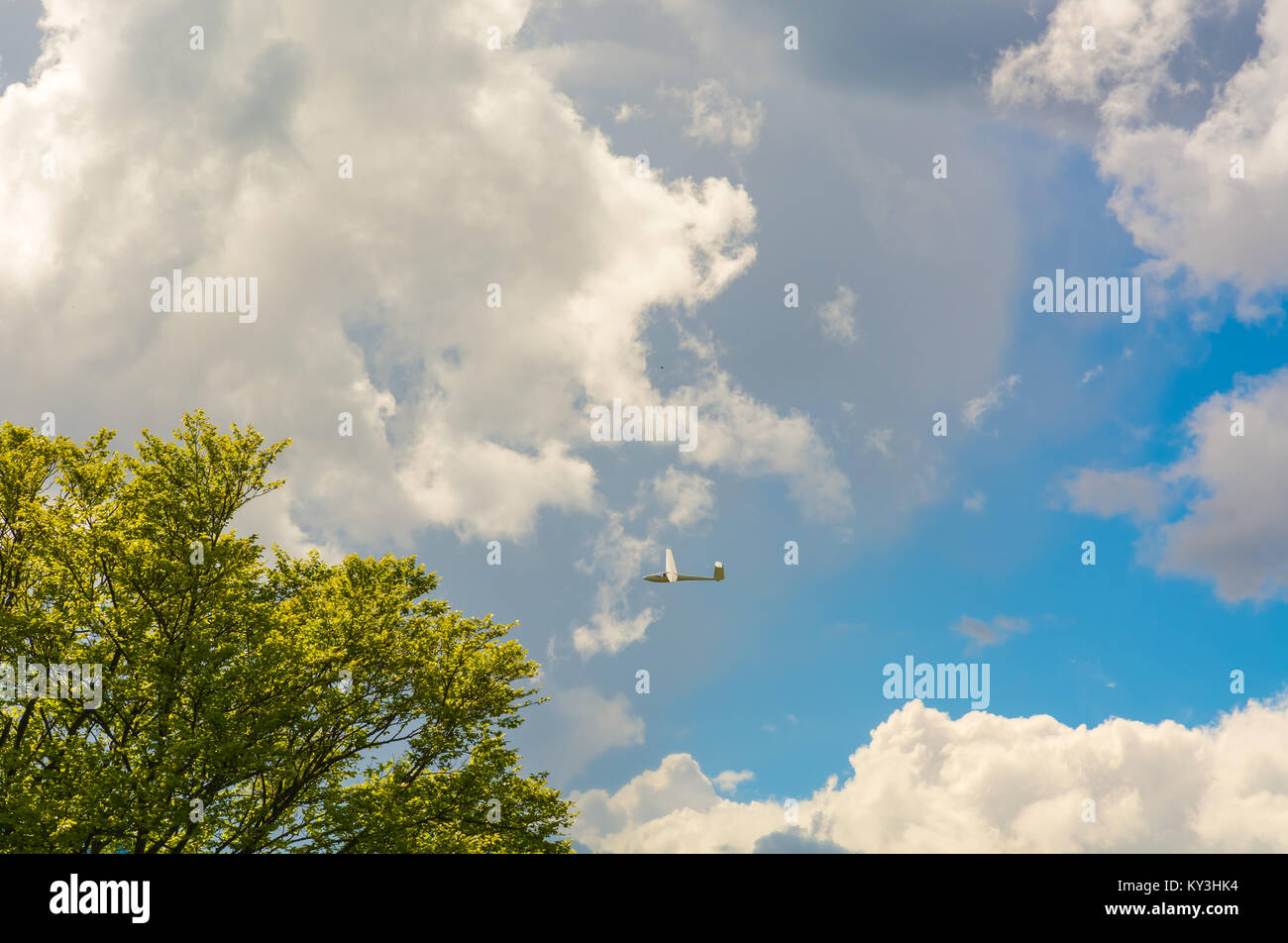 A Glider flying in bleu sky with big white clouds. The glider is a plane that has no engine Stock Photo