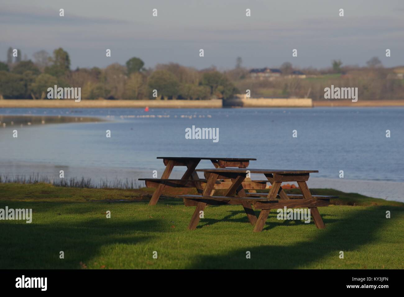 Empty Wooden Picnic Benches of Turf Hotel, looking over the Exe Estuary towards Topsham's Goat Walk. South Devon, - Stock Image