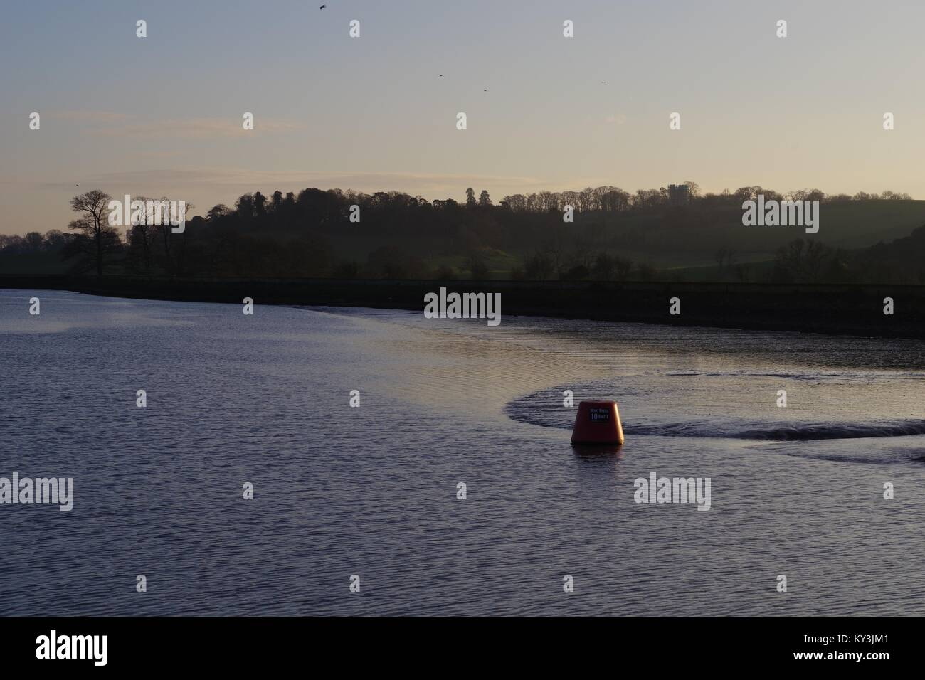 Wooded Countryside of Powderham Estate and the River Exe Estuary at Dusk. South Devon, UK. Stock Photo