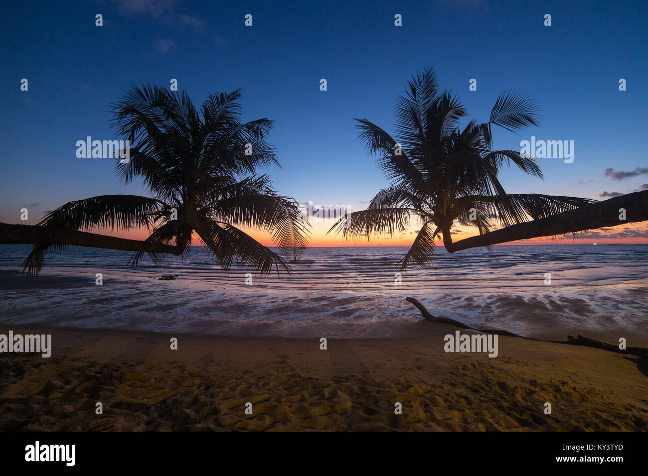Palm trees during sunset on a beautiful tropical beach on Koh Kood island in Thailand - Stock Image