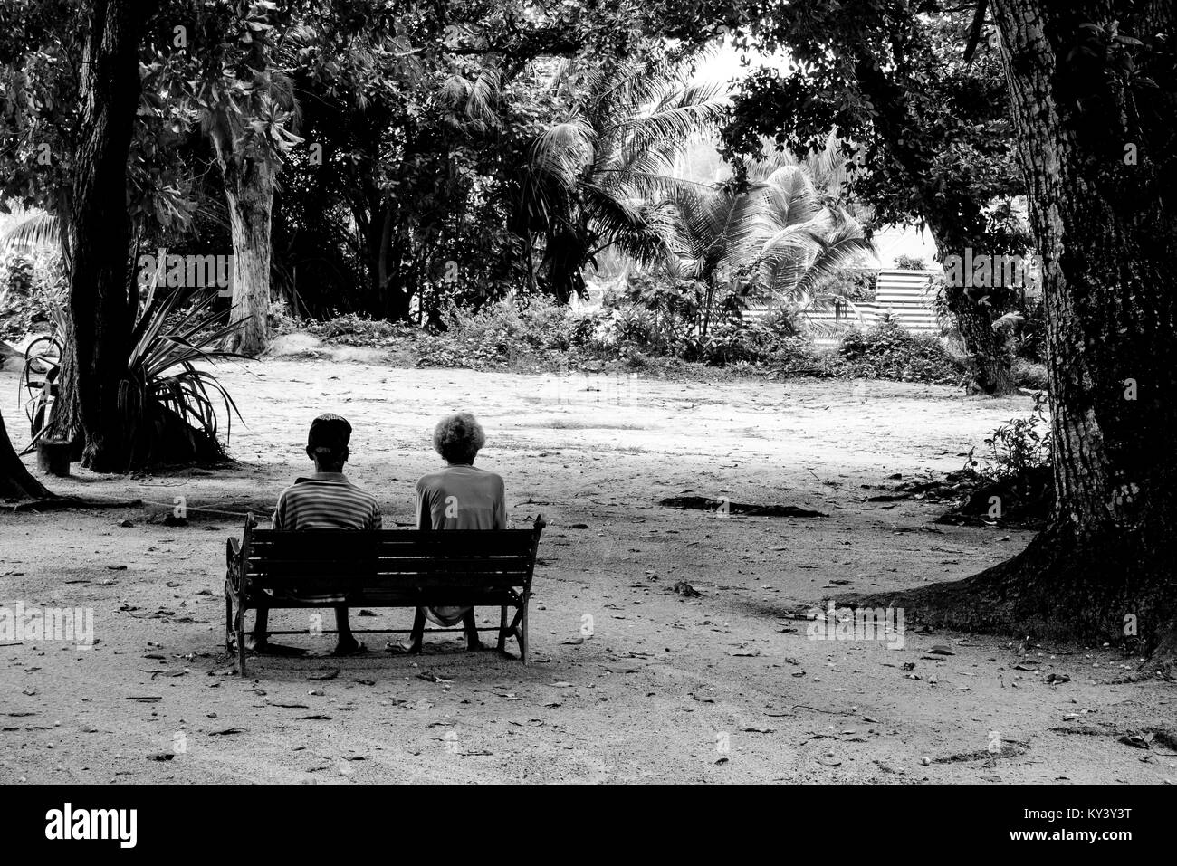 aged couple sitting on a bench, elderly duo in a tropical scenery - Stock Image
