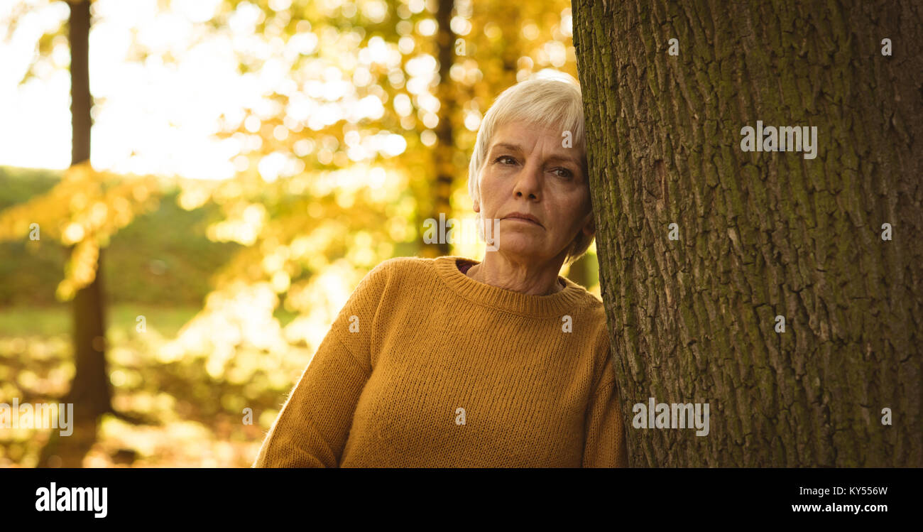 Thoughtful senior woman leaning on tree trunk in the park - Stock Image