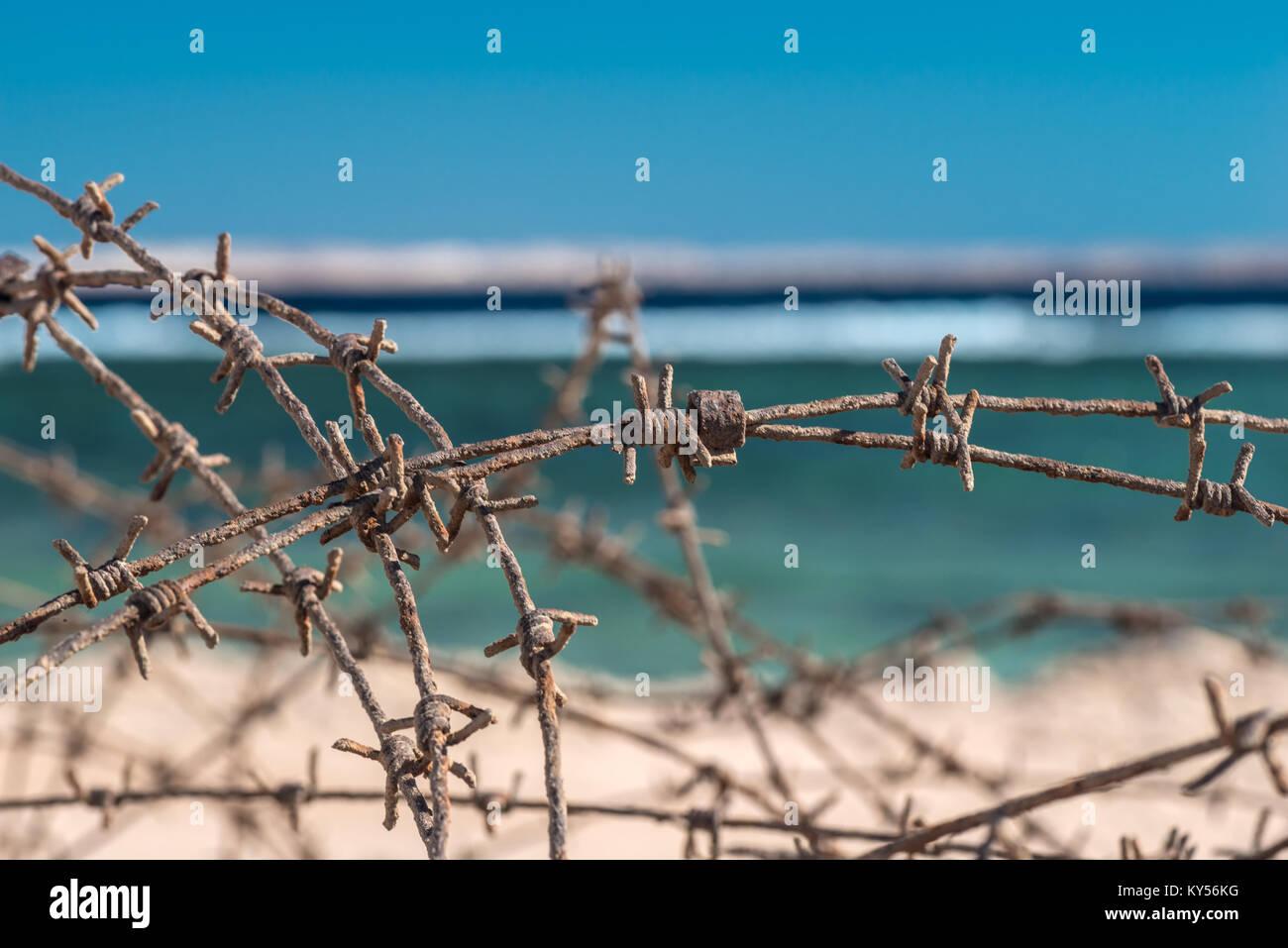 Sea And Wire - WIRE Center •